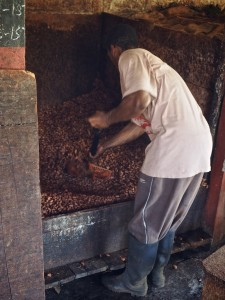 2015-02-Grenada-Chocolate-Company 105